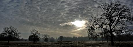 veluwe-panorama1.jpg
