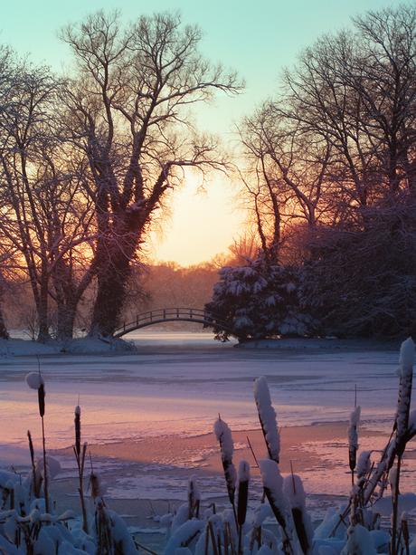 Winter-foto Ter Rivierenhof