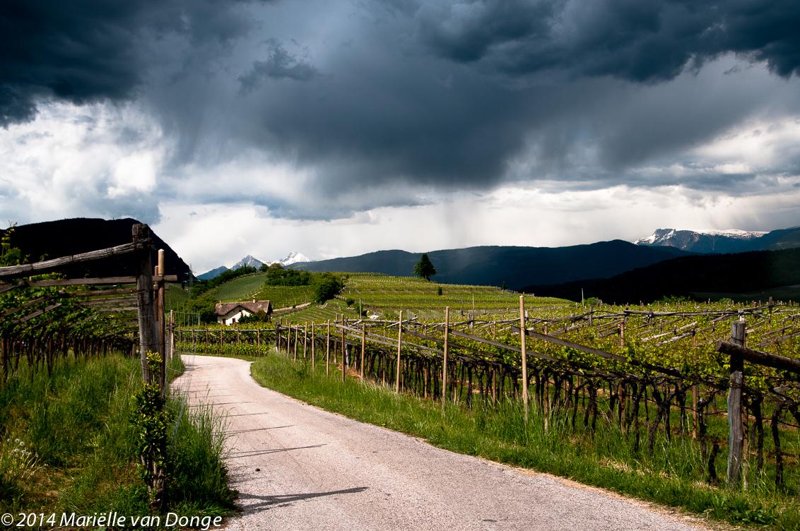De bui voorblijven - Afgelopen mei fietsvakantie in Italië: van Passo di Resia naar Gardameer. Hele mooie tocht. Geen grote afstanden per dag. Bijna alleen maar op fietsp - foto door MvDoNGe op 14-07-2014 - deze foto bevat: lucht, wolken, fietspad, natuur, regen, landschap, voorjaar, bergen, onweer, italie, wijngaarden, lago di caldaro