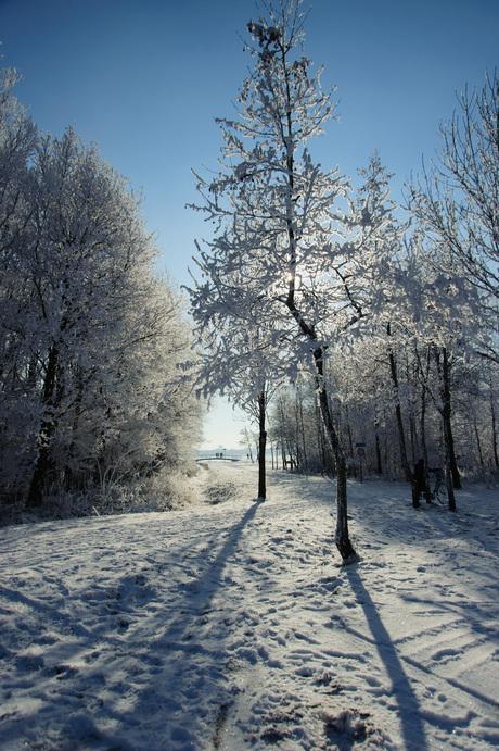 Winter in Sweet Lake City