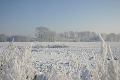 Mooi wit buitengebied van Veghel