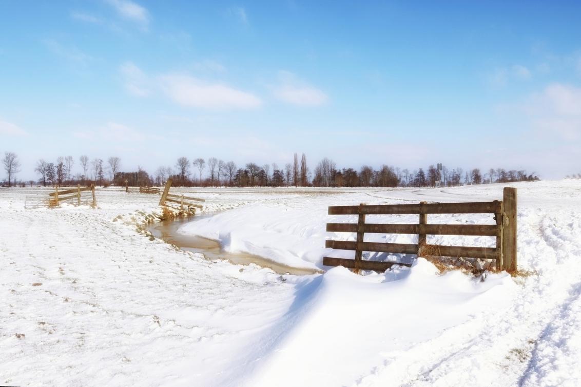 winterlandschap 7203 - - - foto door onne1954 op 12-02-2021 - deze foto bevat: lucht, natuur, licht, sneeuw, winter, landschap, bomen, polder