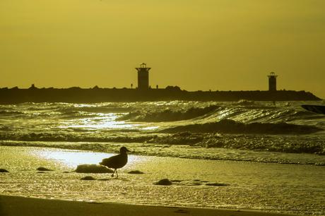 Zonsondergang in Scheveningen.