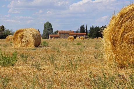 Typisch Toscane