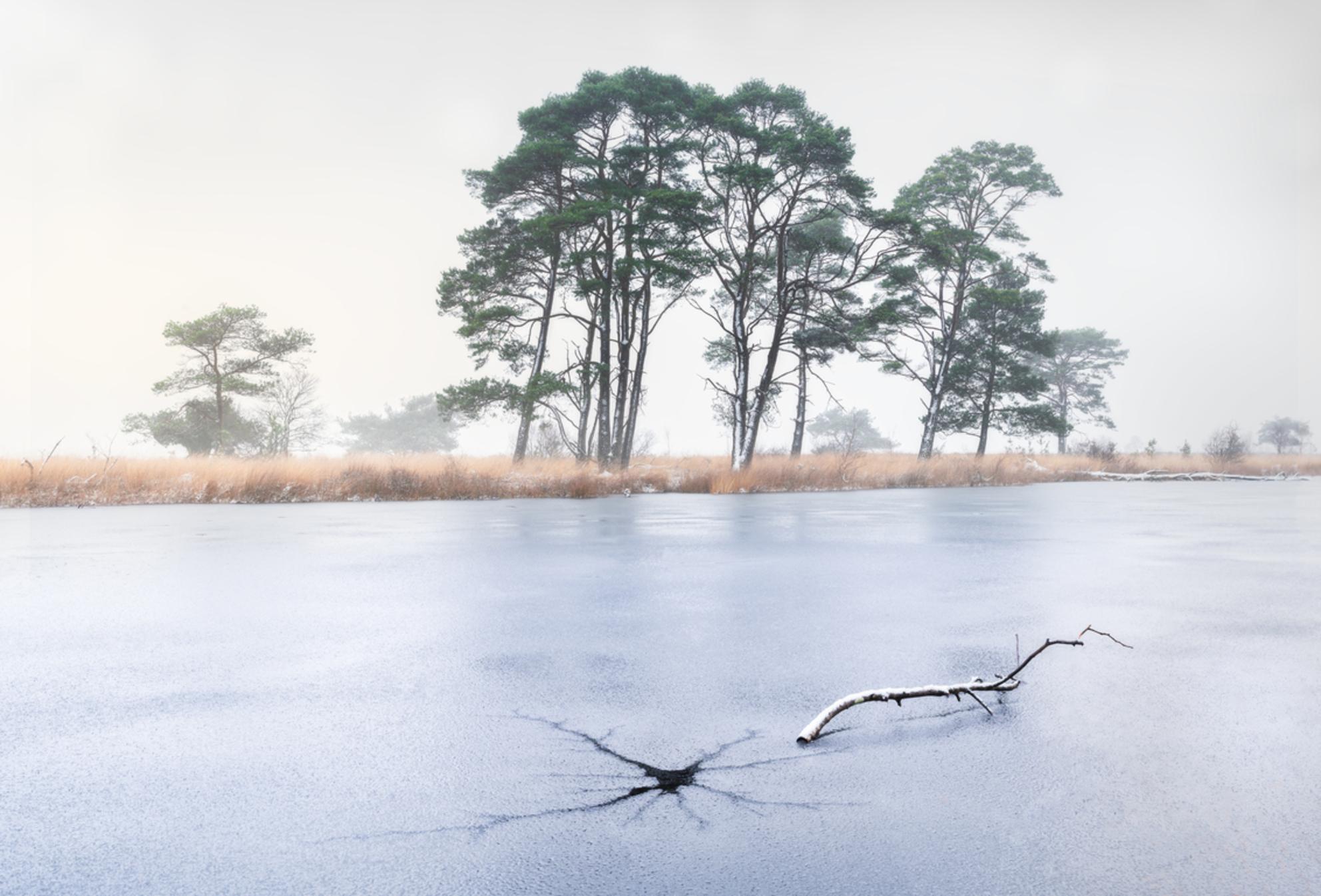 Ice crack with a view pano - - - foto door renevierhuis op 19-01-2021 - deze foto bevat: water, panorama, natuur, sneeuw, winter, ijs, spiegeling, landschap, mist, drenthe, bomen
