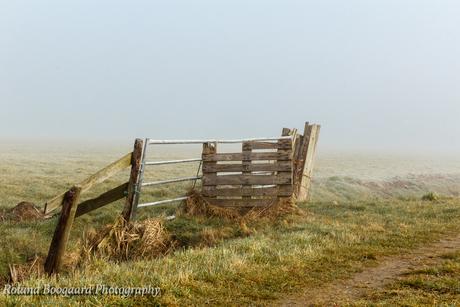 hek in de mist polder