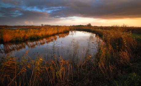 Friesland in de morgen 3.jpg
