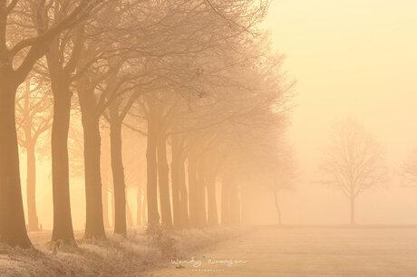 Mist en zon
