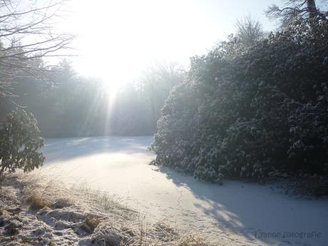 op een mooie winter dag...
