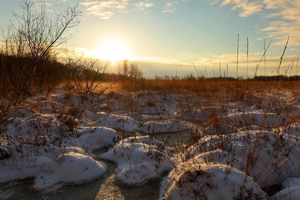Sun snow - Op een vroege het mooie Drentse landschap vastgelegd. - foto door Linny82- op 27-02-2021 - deze foto bevat: sneeuw, winter, landschap, zonsopkomst