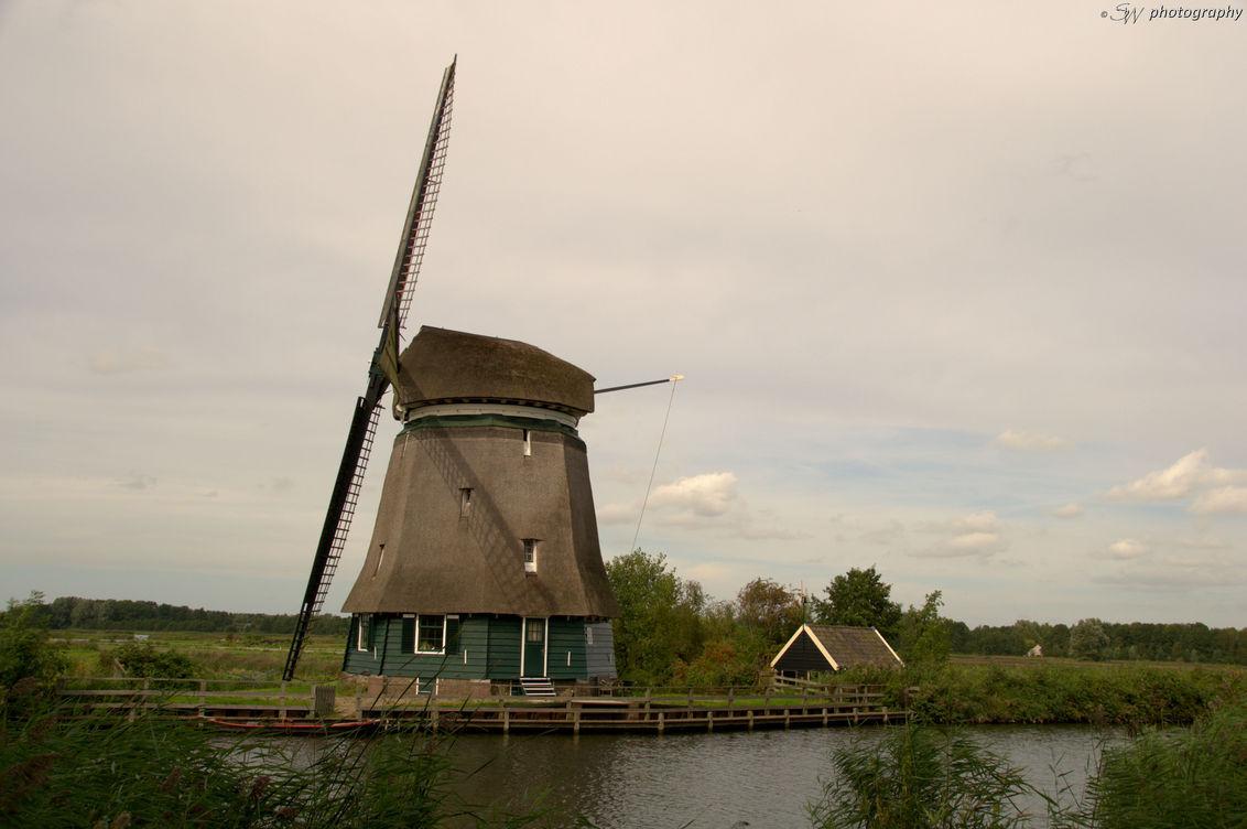 Oude molen - Deze molen langs de rivier, schaduw van de wieken op de molen! - foto door Steef29 op 14-09-2015 - deze foto bevat: lucht, wolken, zon, natuur, licht, landschap, schaduw, tegenlicht, bomen, rivier, molen, wieken, polder