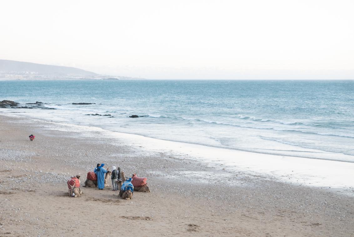 Taghazout - Strandleven - Sfeerfoto van het strand van Marokko (prachtig tranquille avondlicht). - foto door Krulkoos op 03-02-2020 - deze foto bevat: kleuren, kleur, blauw, strand, zee, zonsondergang, landschap, schilderij, kust, marokko, beach, landscape, colour, kamelen, kameel, oceaan, pastel, strandleven, kustlijn, schilderachtig, dromedaris, reisfotografie, camel, pastels, colorful, morocco, camels, coast, dromedarissen, maroc, maurice weststrate, lx100, taghazout, typisch marokko, typical morocco, moroccan colors, colors of morocco, pastel colors