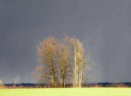Achtergrond weer dat onweer