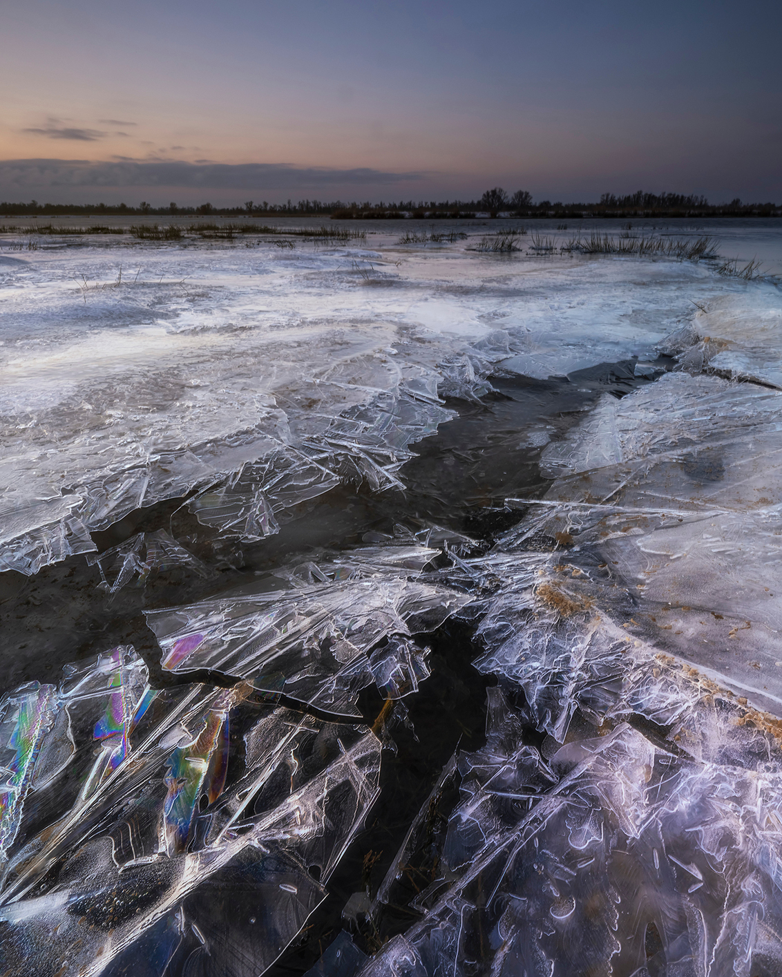 Kwel & IJs - De Biesbosch, in een gebied waar je veel kwel tegenkomt wat ook zichtbaar is in het gevormde ijs. - foto door mvbalkom op 11-02-2021 - deze foto bevat: lucht, wolken, water, licht, sneeuw, winter, ijs, spiegeling, tegenlicht, zonsopkomst, biesbosch, middenformaat, fujifilm, mvbalkom, kase filters, gfx100