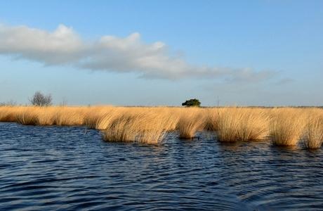 wind, water en zonlicht