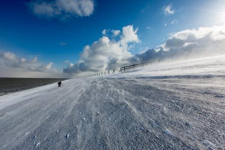 Frozen Waddendijk