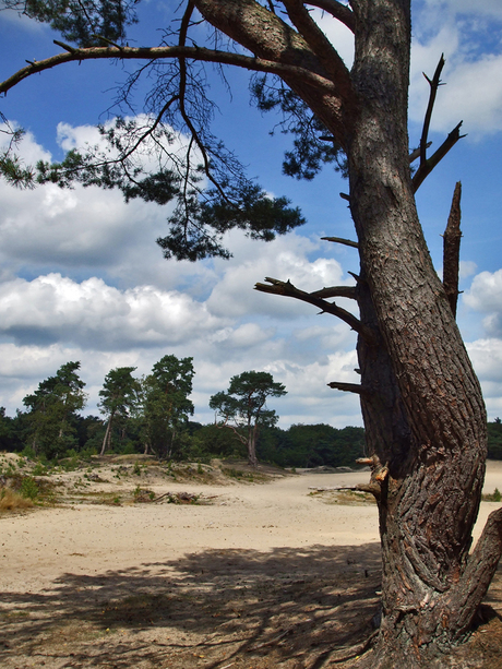 Zand en lucht