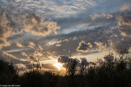 Bewolkte zonsondergang Schagen