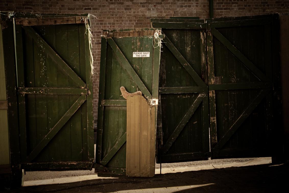 Deur? - Dit is mijn nieuwe tuindeur in Surry Hills Sydney. - foto door haikodejong op 04-08-2010 - deze foto bevat: deur