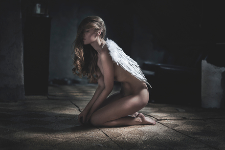 Lost my wings in the process