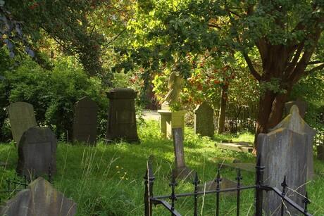 begraafplaats groenesteeg Leiden