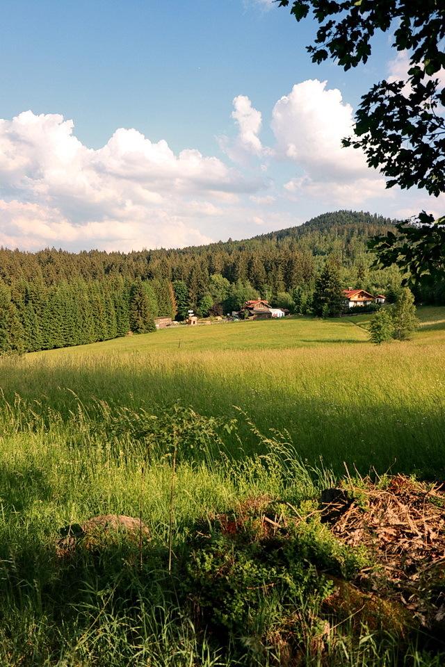 Bayerischer Wald - Op de terug weg van de wandeling om de Riederin Berg bij de plaats Bodenmais, maakte ik dit liefelijke landschapsplaatje.  5 juni 2018 Groetjes, Bob - foto door oudmaijer op 10-04-2021 - locatie: 94249 Bodenmais, Duitsland - deze foto bevat: wolk, lucht, fabriek, boom, natuurlijk landschap, zonlicht, mensen in de natuur, berg, atmosferisch fenomeen, gras