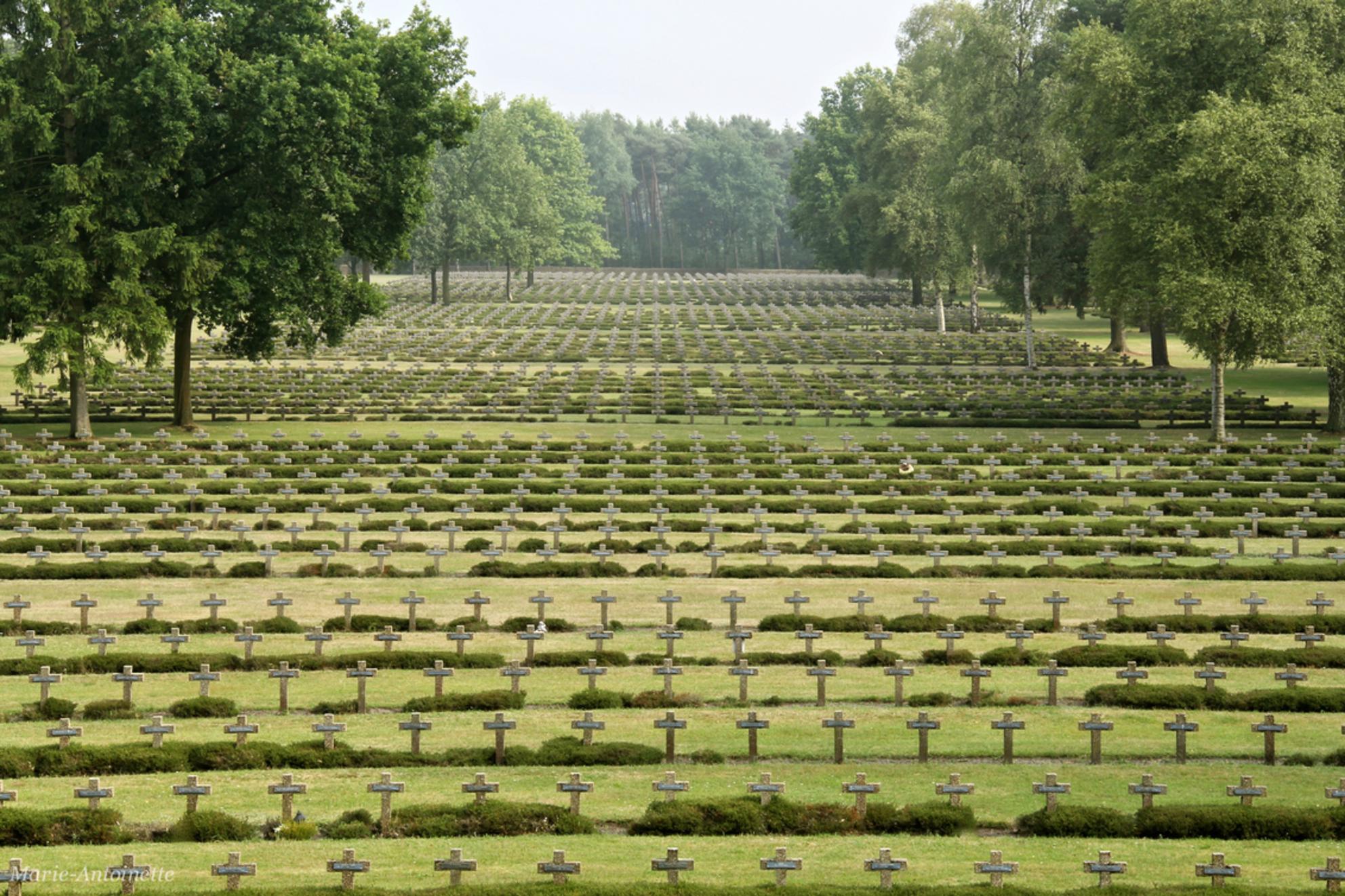 Duitse Militaire Begraafplaats Lommel - Gruwelijke plaats. Bijna 20.000 kruizen met op iedere kruis 2 namen. 39.102 Duitse doden. Hier gezien vanaf het monument, recht vooruit gezien, link - foto door Marie-Antoinette op 11-07-2014 - deze foto bevat: kerkhof, militair, duits, lommel - Deze foto mag gebruikt worden in een Zoom.nl publicatie