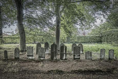 Oud en verlaten kerkhof in Nieuwleusen