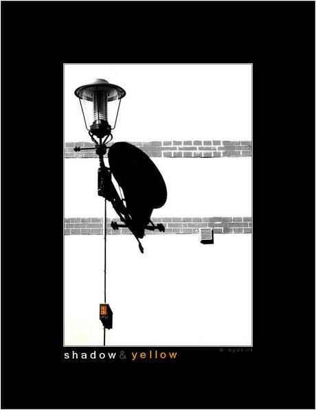 Shadow & Yellow