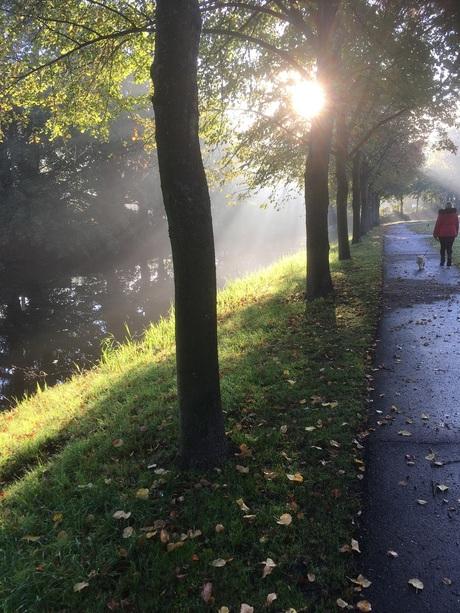 Het zondagochtend licht