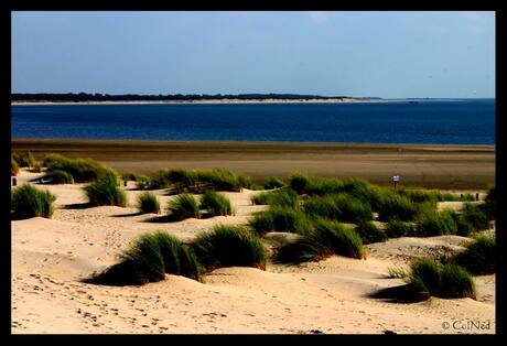 Nice Beach....