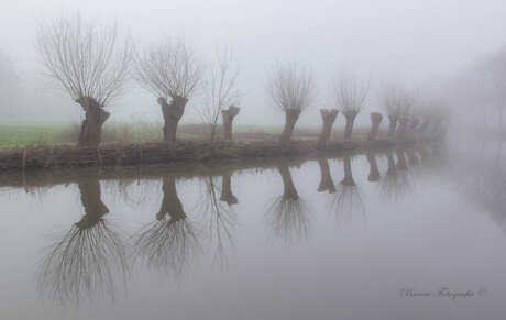 Misty Blue Monday