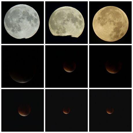 """Collage van de """"Bloedmaan""""2015"""