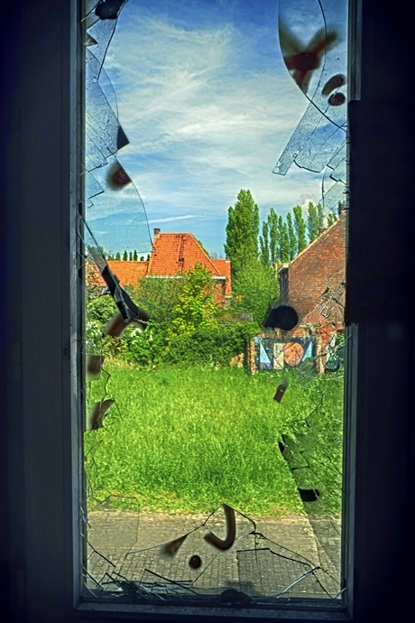 view through shards of glass