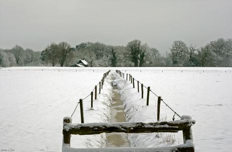 Winterlandschap 2010