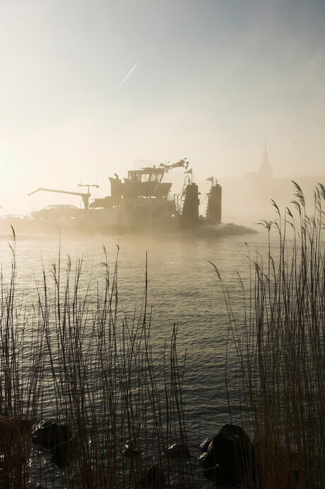 Mist op de Maas
