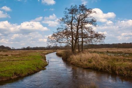 Loonerdiepje - Nog steeds vrij hoog water in dit kleine stroompje.  Bedankt voor het bekijken en de reacties op mijn vorige uploads!  Groeten, Jeroen - foto door JerPet op 29-03-2021 - deze foto bevat: lucht, water, lente, natuur, landschap, loonerdiepje