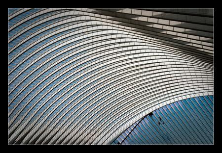Lines of Calatrava - Alweer de laatste foto in deze serie ….. Een overzicht van de constructie in de centrale hal op Station Luik-Guillemins. Om je een indruk te geven  - foto door 00marcel00 op 06-09-2009 - deze foto bevat: station, trein, lijnen, architectuur, luik, hal, constructie, calatrava, santiago, guillemins