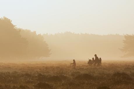 Fietsers in de mist
