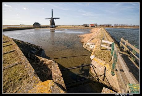 Texel; de polder