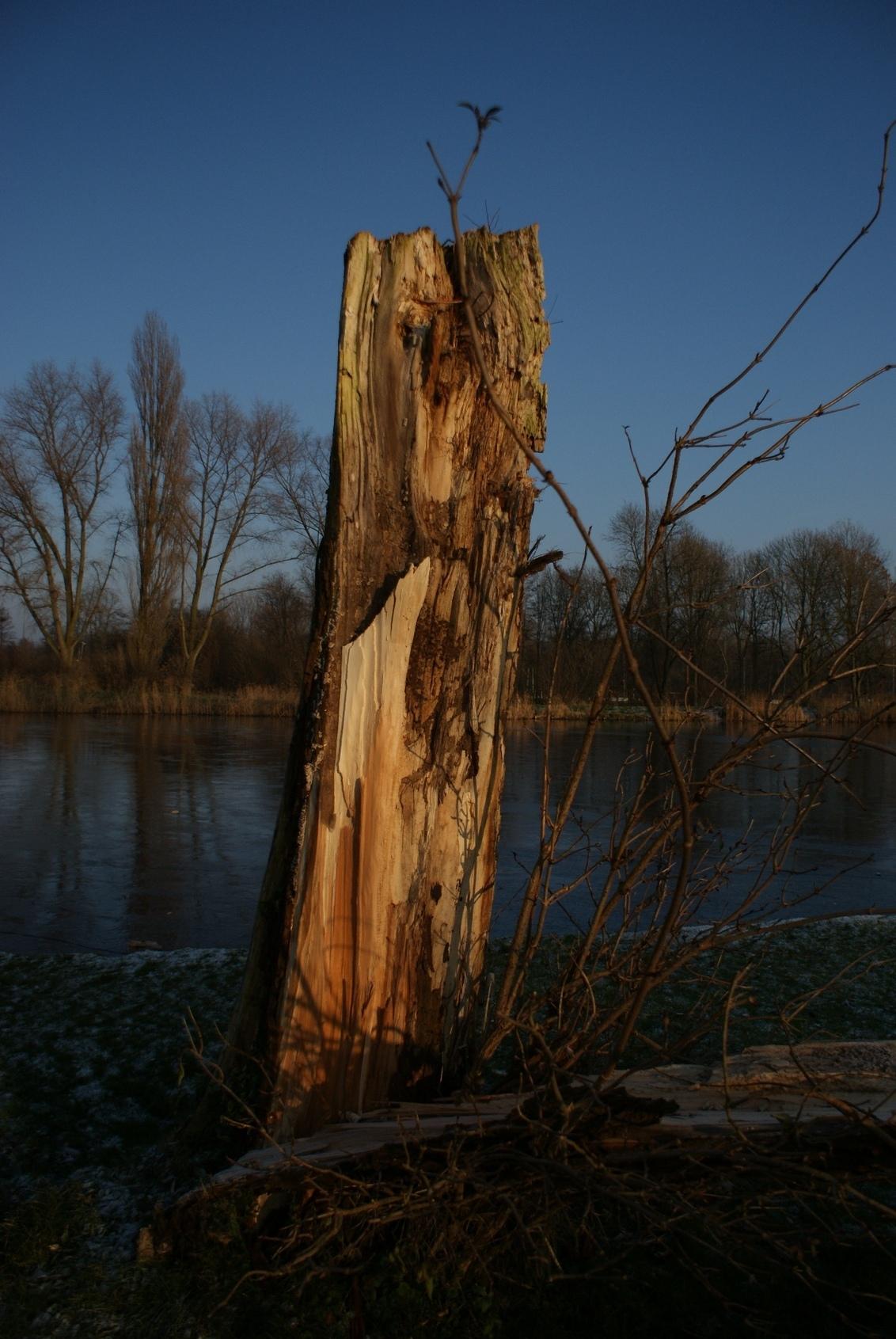 Nature 10 - Dit is een serie over de natuur in Noord-Holland. Fraai landschap vastgelegd met briljante opnames.  Ijzige middag samen met Erik (Kire op Zoom). - foto door maarten1971 op 02-01-2009 - deze foto bevat: do, sony, ijzig, alpha, oostzaan, twiske, kou-