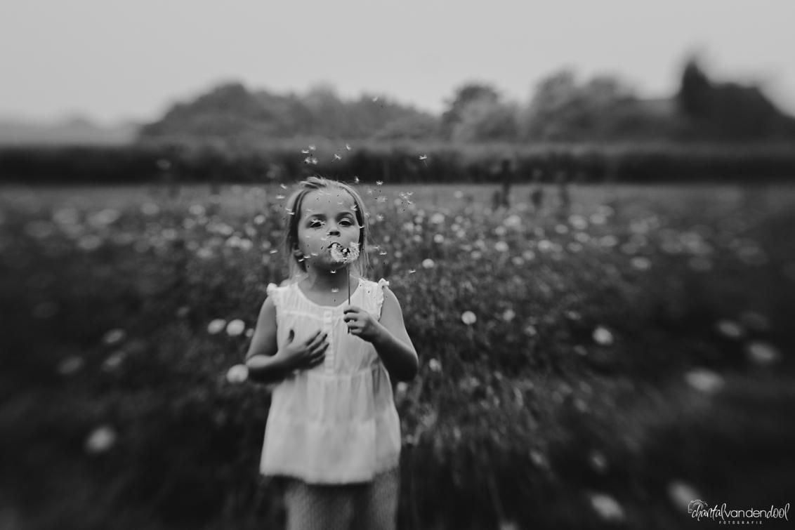 Make a wish - Gemaakt met de Lensbaby composer pro en het Double glass optic. - foto door ChantalvdDool op 25-10-2014 - deze foto bevat: bloem