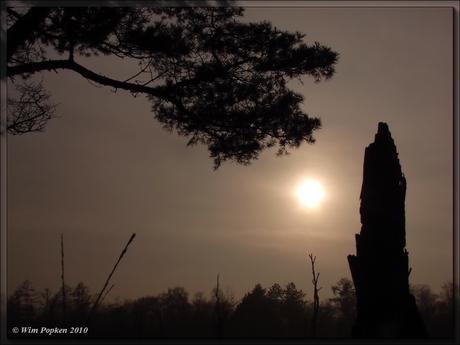 Wazig zonnetje