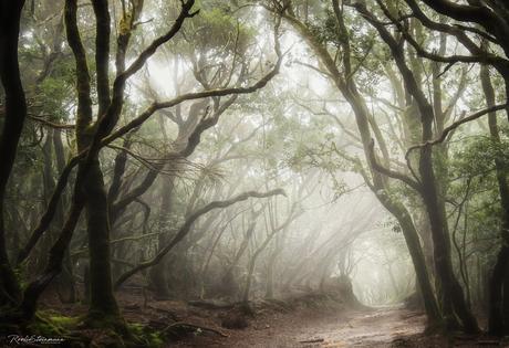 Mystical path of Anaga