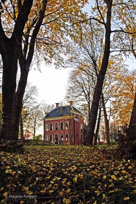Borg Rusthoven. - De bomen rond de borg zijn kort geleden gesnoeid daardoor kun je de borg aan alle kanten weer goed zien. - foto door rimar op 11-11-2012 - deze foto bevat: architectuur, borg, landschap.