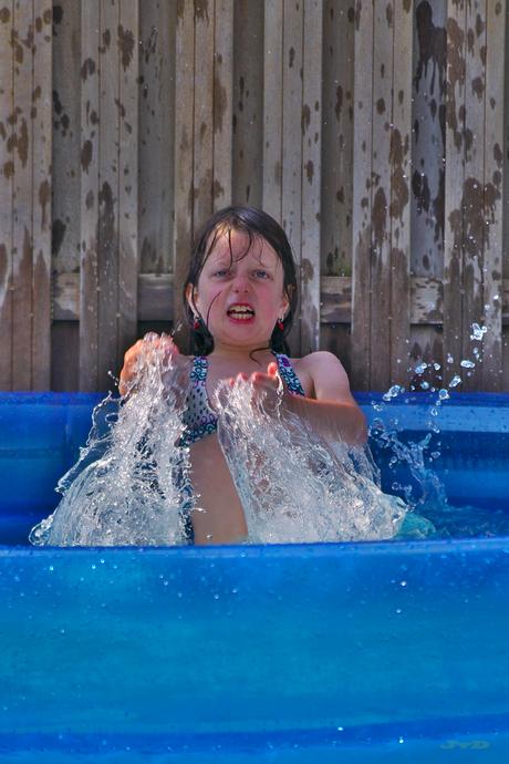 Lisa de watermeester