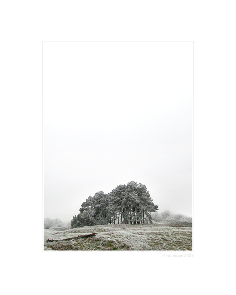 A Hazy Winter Wonderland - II