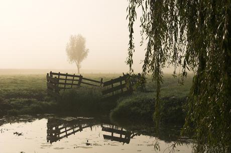 Alblasserwaard in de mist