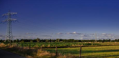 Stroomasten Landschap 2