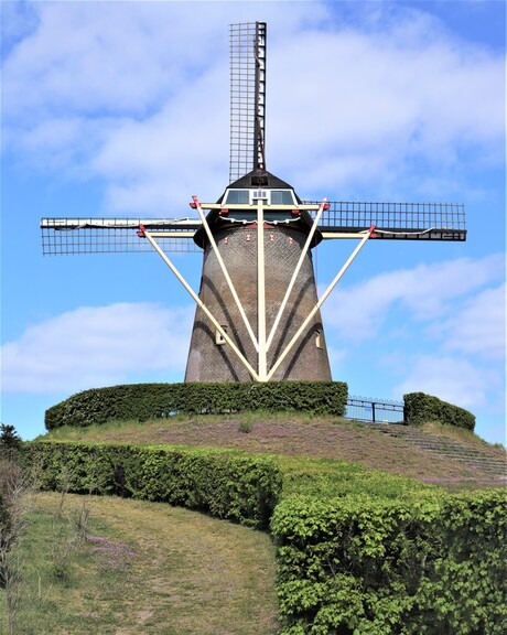 De molen van Wijchen